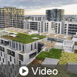 Green Roofing: Blending Built Environments with Nature to Maximize Rooftop Productivity